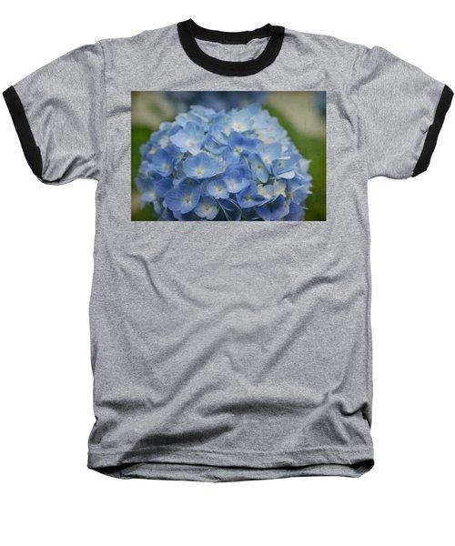 Hydrangea Solitude Baseball T-Shirt
