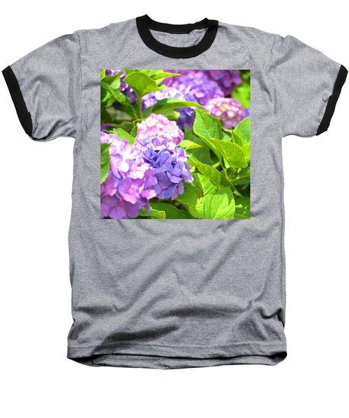 Baseball T-Shirt featuring the photograph Hydrangeas In The Sun by Rachel Mirror