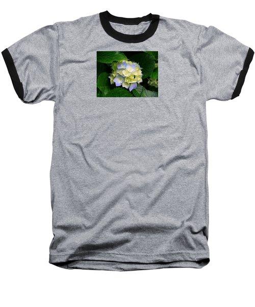 Hydrangeas Baseball T-Shirt