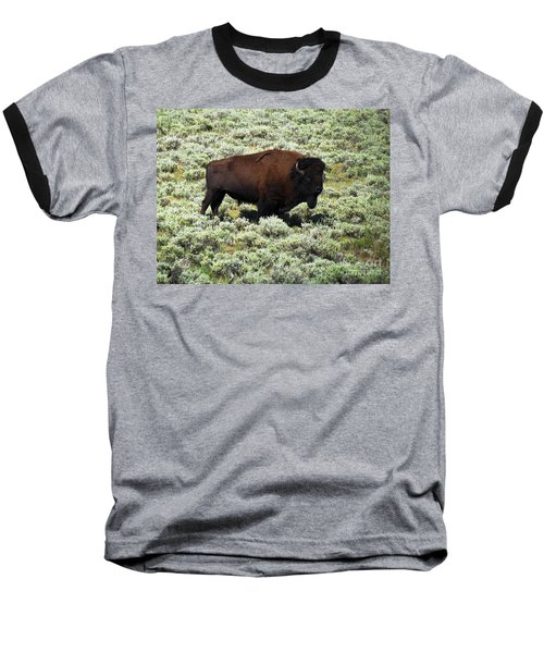 I Am The King Of This Meadow Baseball T-Shirt