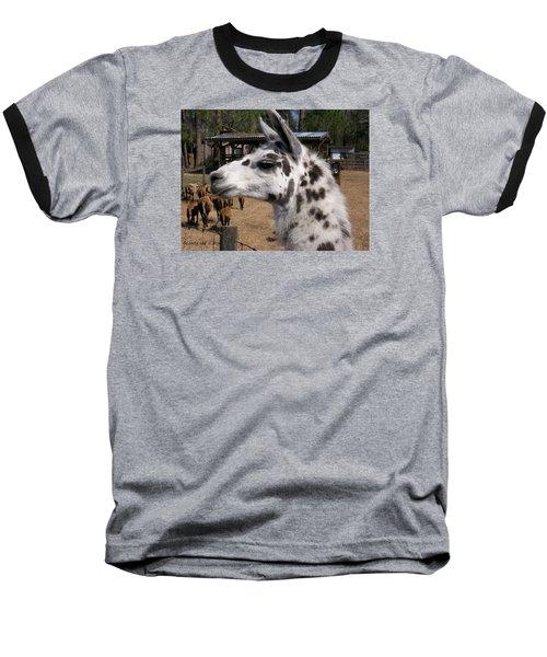 Baseball T-Shirt featuring the photograph Mad Llama Rules by Belinda Lee