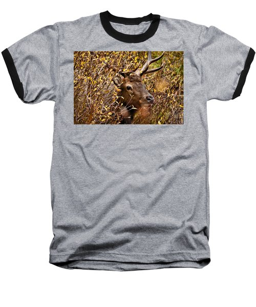 I See You Baseball T-Shirt by Steven Reed