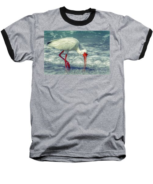 Ibis Feeding Baseball T-Shirt by Valerie Reeves