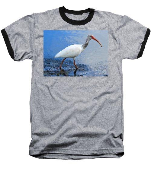 Ibis Visitor Baseball T-Shirt