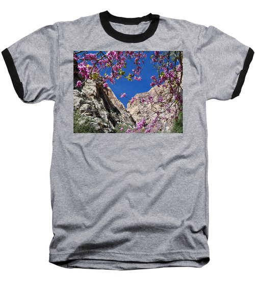 Baseball T-Shirt featuring the photograph Ice Box Canyon In April by Alan Socolik