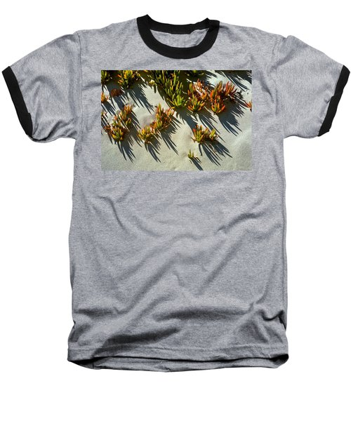 Ice Plant In Sand Baseball T-Shirt
