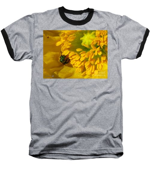 Baseball T-Shirt featuring the photograph Iceland Poppy Pollination by J McCombie