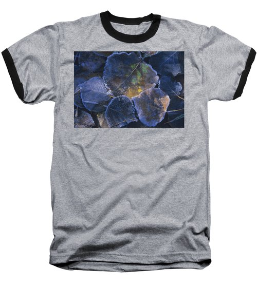 Icy Leaves Baseball T-Shirt