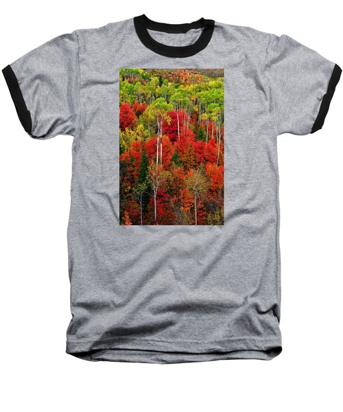 Idaho Autumn Baseball T-Shirt by Greg Norrell