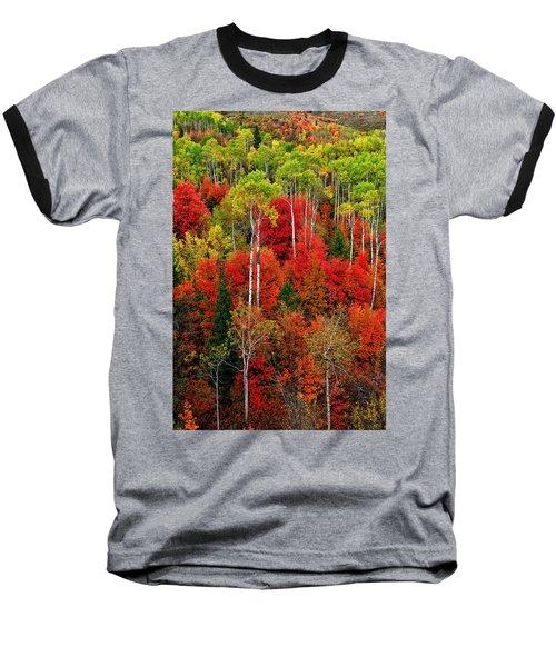 Idaho Autumn Baseball T-Shirt