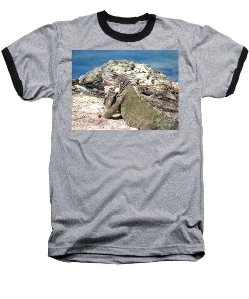 Iguana In The Sun Baseball T-Shirt