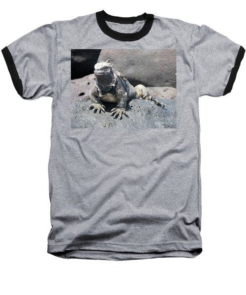 Iguana Or Prehistory Survivor Baseball T-Shirt