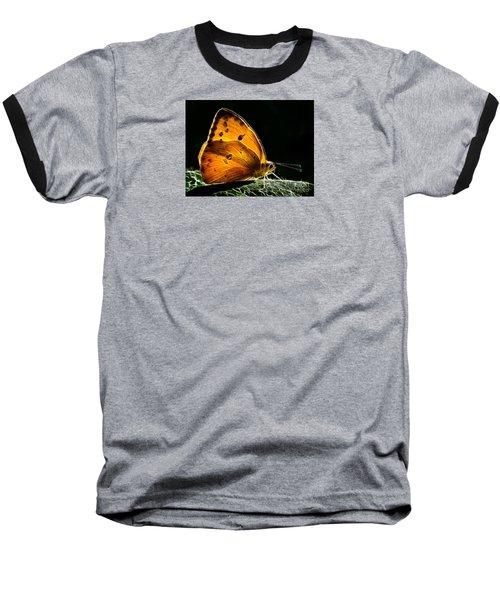 Illuminated Butterfly Baseball T-Shirt by Alice Cahill