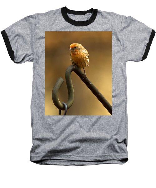 Baseball T-Shirt featuring the photograph I'm Orange by Robert L Jackson
