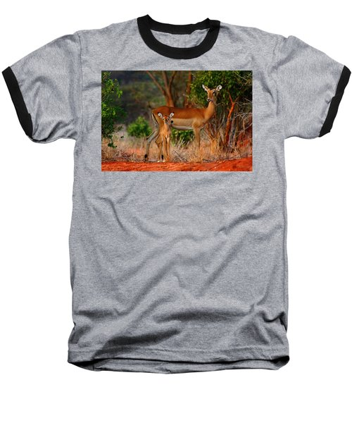 Impala And Young Baseball T-Shirt