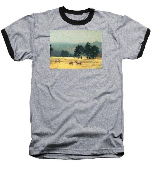 Impression Evergreen Colorado Baseball T-Shirt by Dan Miller