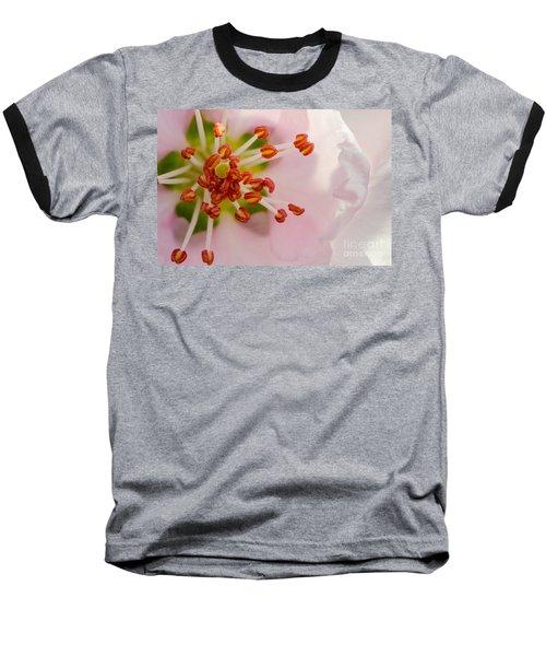 In A Pink Cloud Baseball T-Shirt