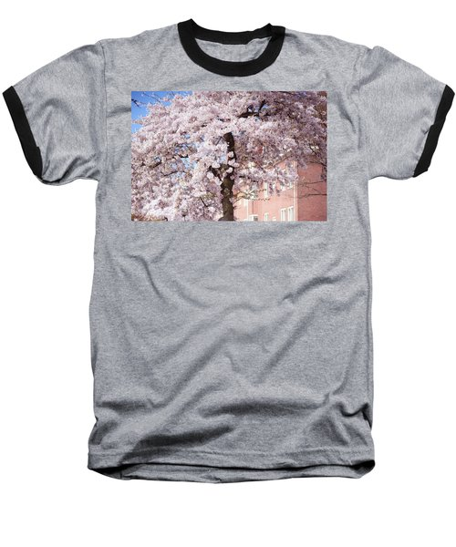 In Its Glory. Pink Spring In Amsterdam Baseball T-Shirt