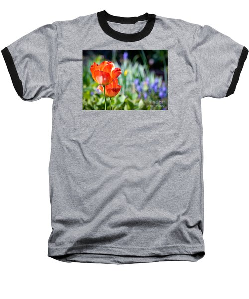 In The Garden Baseball T-Shirt by Kerri Farley