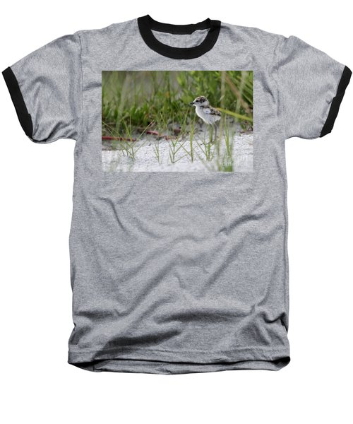 In The Grass - Wilson's Plover Chick Baseball T-Shirt