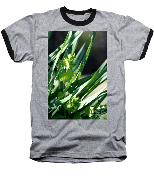 In The Grass Baseball T-Shirt