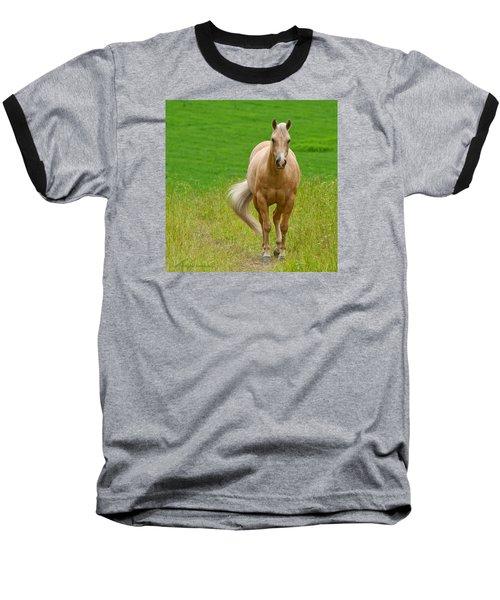 In The Meadow Baseball T-Shirt by Torbjorn Swenelius