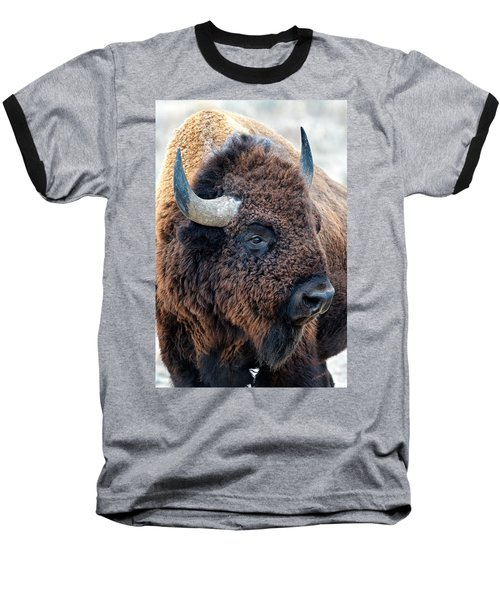 Bison The Mighty Beast Bison Das Machtige Tier North American Wildlife By Olena Art Baseball T-Shirt