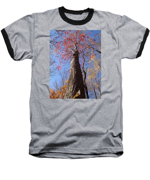 In The Woods 1 Baseball T-Shirt