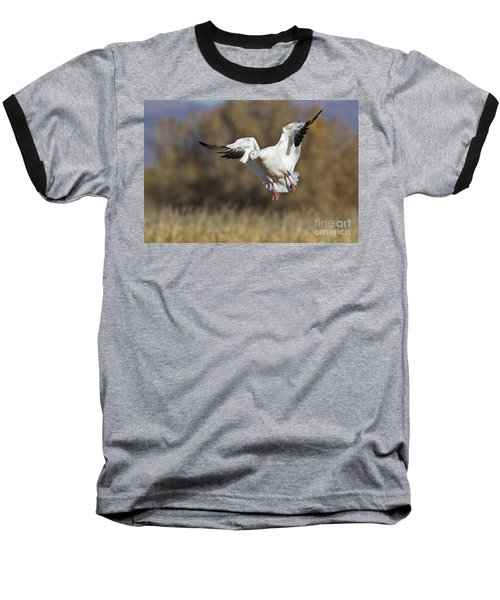 Baseball T-Shirt featuring the photograph Incoming Snow Goose by Bryan Keil