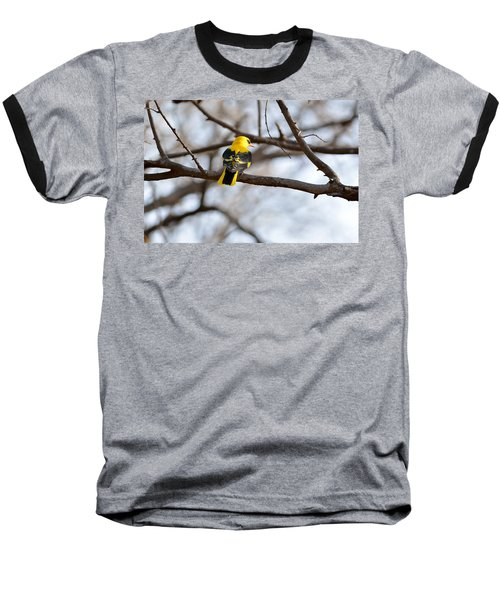 Indian Golden Oriole Baseball T-Shirt