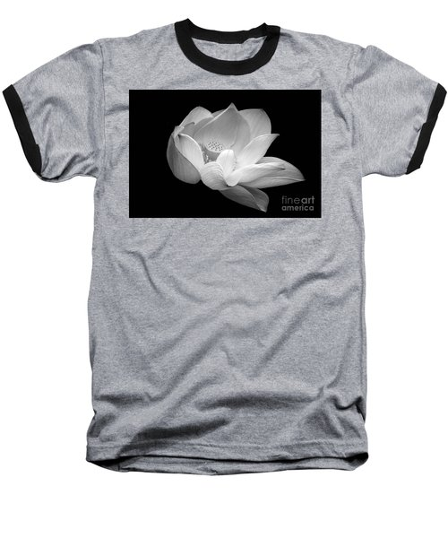Indian Sacred Lotus In Black And White Baseball T-Shirt