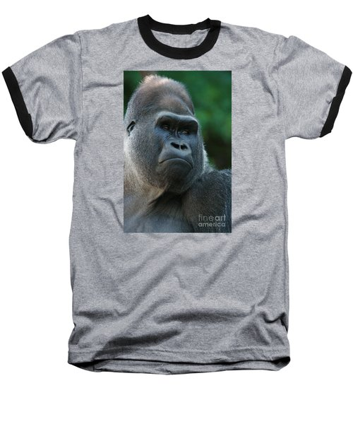 Baseball T-Shirt featuring the photograph Indifference by Judy Whitton