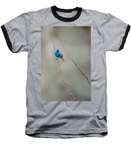 Indigo Bunting Baseball T-Shirt by Bill Wakeley