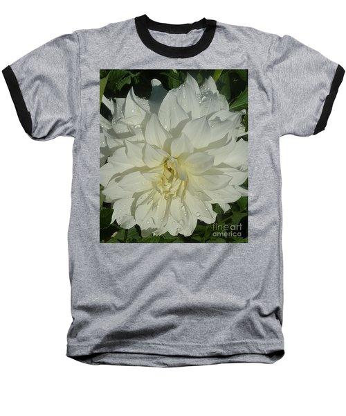 Innocent White Dahlia  Baseball T-Shirt by Susan Garren