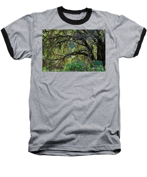 Baseball T-Shirt featuring the photograph Into The Woods by Susan Wiedmann