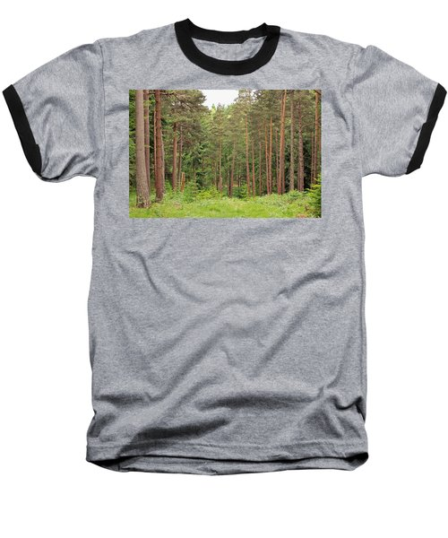 Into The Woods Baseball T-Shirt by Tony Murtagh