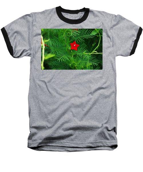 Ipomoea Quamoclit Baseball T-Shirt