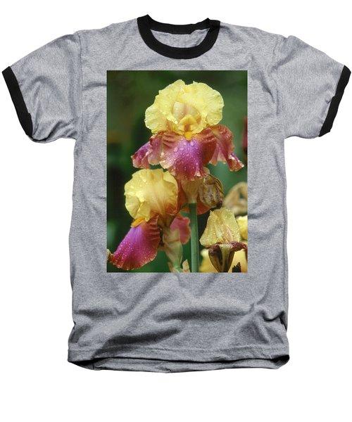 Iris 1 Baseball T-Shirt