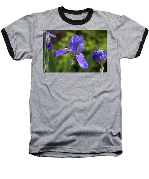 Iris 4 Baseball T-Shirt