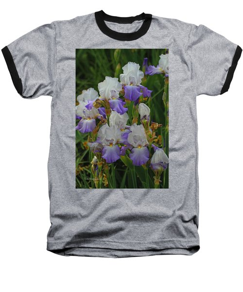 Iris Patch At The Arboretum Baseball T-Shirt by Tom Janca