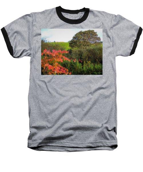 Irish Autumn Countryside Baseball T-Shirt