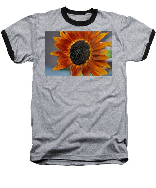 Isabella Sun Baseball T-Shirt by Joseph Yarbrough