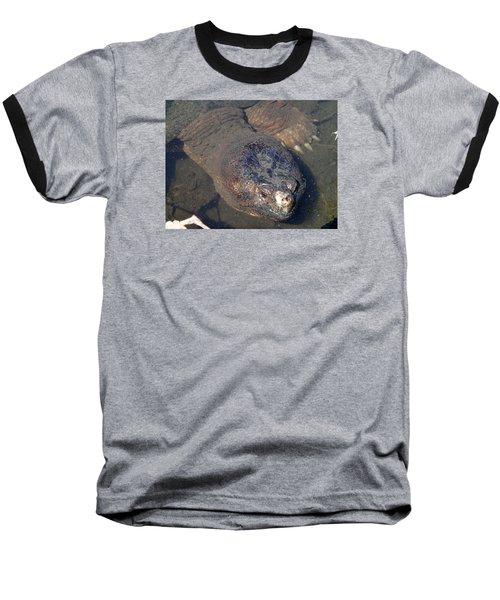 Island Turtle Baseball T-Shirt