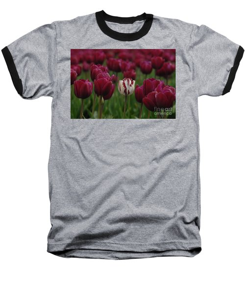 It Is Beautiful Being Different Baseball T-Shirt by Bob Christopher