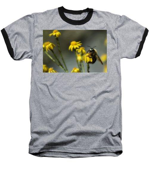It's Mine-all Mine Baseball T-Shirt by Michael Eingle