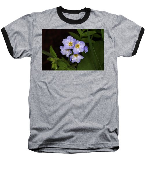 Baseball T-Shirt featuring the photograph Jacobs Ladder by Alan Vance Ley