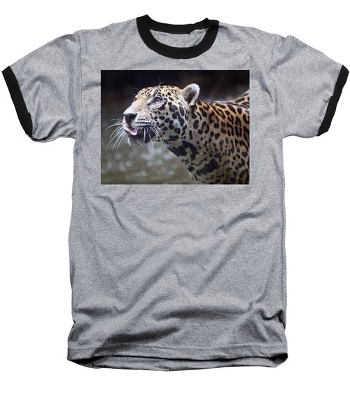 Baseball T-Shirt featuring the photograph Jaguar Sticking Out Tongue by Shoal Hollingsworth