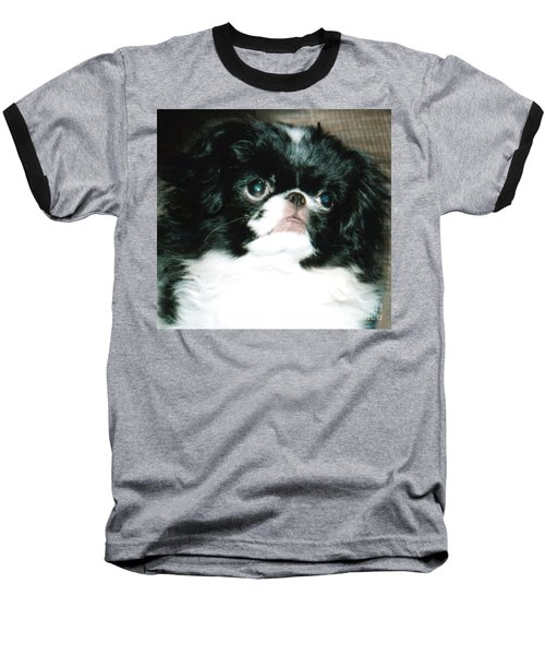 Baseball T-Shirt featuring the photograph Japanese Chin Puppy Portrait by Jim Fitzpatrick