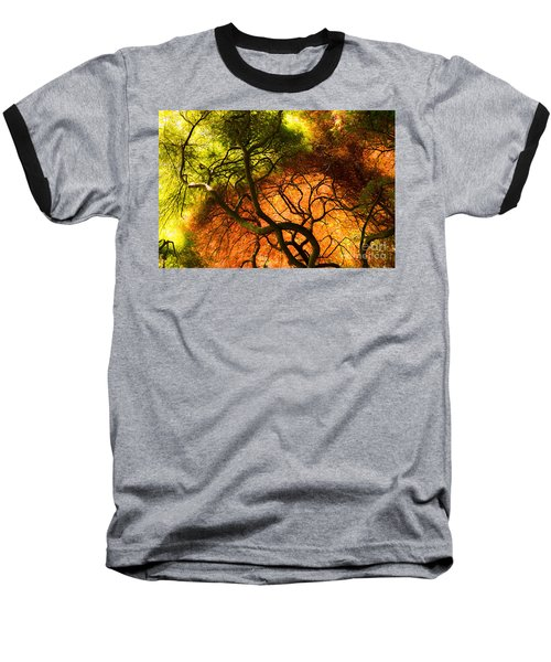 Japanese Maples Baseball T-Shirt by Angela DeFrias