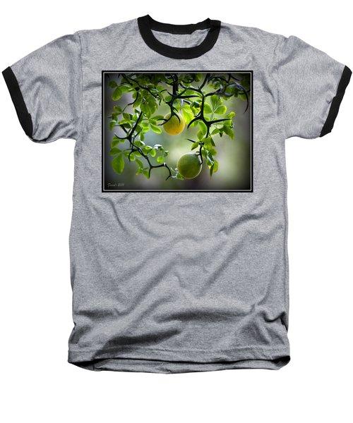 Japanese Orange Tree Baseball T-Shirt